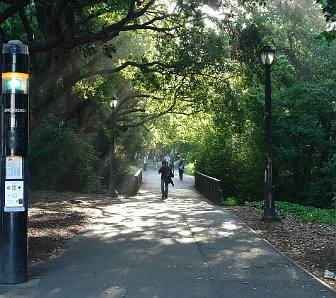 Berkeley, west entry walkway