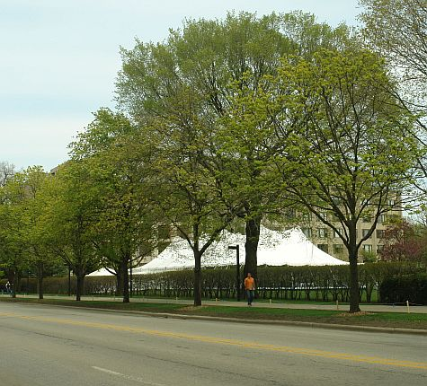 Kellogg reunion tent on N. Sheridan Road