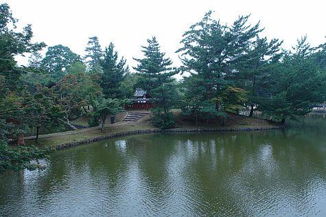 20070725_Toda-Ji _pond.jpg