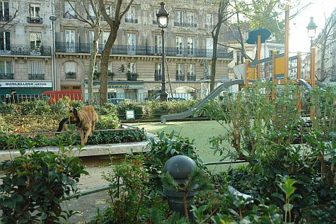 20071209_Bastille_Market_dog_park.jpg