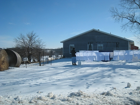20080215_Fairfield_Amish_farm.jpg