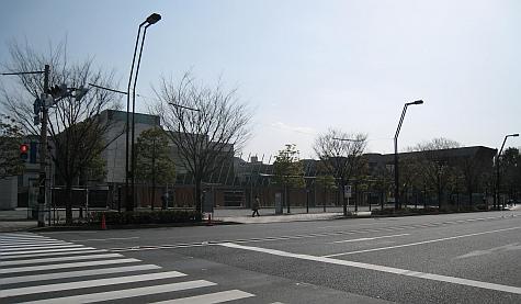 DI_20080303_Tokyo_MoT_crossing.jpg
