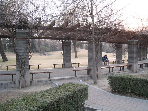 DI_20080311_Tsinghua_covered_walk.jpg