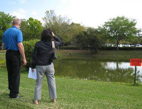 DI_20080318_Tampa_swamp.jpg