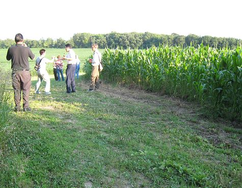 DI_20080715_WiscRanch_rear_corn.jpg