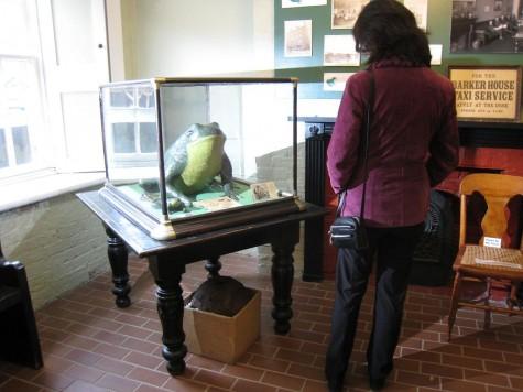 DI_20081003 134214 Fredericton York-SunburyMuseum FredsFamousFrogs
