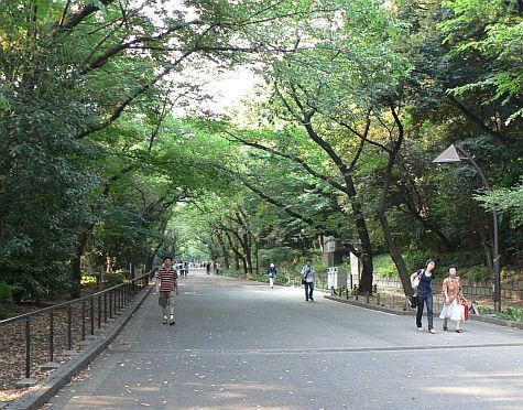 a walking holiday road